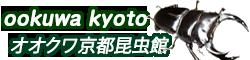 オオクワ京都昆虫館  クワガタ カブトムシ 昆虫標本 昆虫イベント